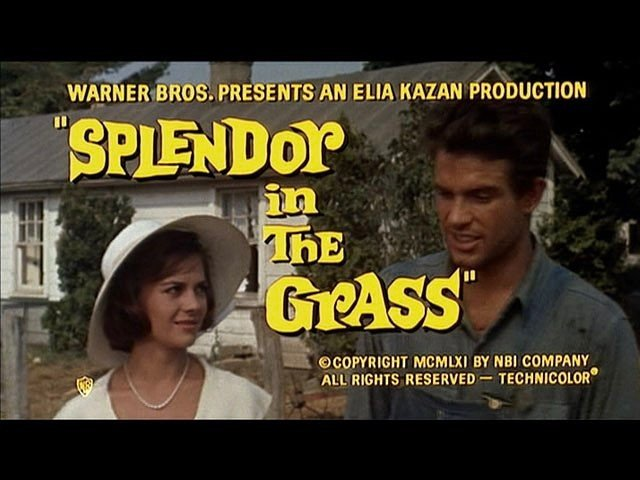 "In 1962 Natalie Wood was nominated for a Golden Globe for Best Actress in a Drama Motion Picture for her work on ""Splendor in the Grass"""